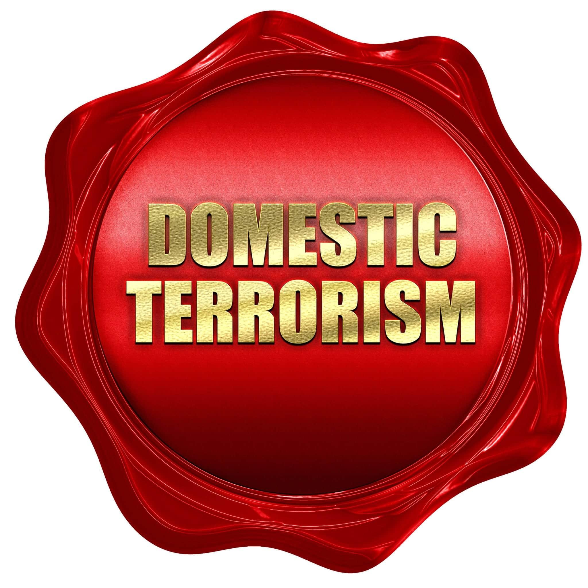 McSally Reignites Debate on Domestic Terrorism Law